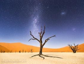 Deserto da Namíbia, na África. Foto: Beth McCarley