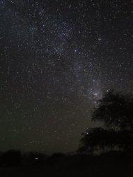 Vista do céu no Deserto do Atacama- Chile, durante um tour astronômico. É o deserto mais alto e seco do mundo, o que possibilita essas vistas! Foto: um japonês que estava com uma câmera foda que me cedeu a imagem na hora. Valeu japa!