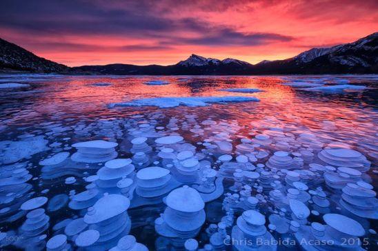 Lago Abraham, no Canadá. As bolhas de ar congeladas ocorrem porque as plantas que se encontram no leito do lago liberam o gás metano, que ao chegarem próximo à superfície se deparam com temperaturas mais frias e congelam.