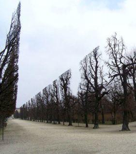 Parque de Schönbrunn, na Áustria. Imagem: http://www.ohmymag.com.br/